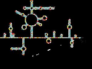 supplementaryfigure1-1_72dpi(2)